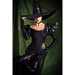 Wicked Witch of the West Costume for Adults - Oz - Limited Edition