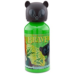 Aluminum Brave Water Bottle -- Small