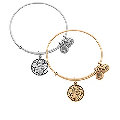 Ariel Bangle by Alex and Ani